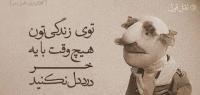 mohamad3423