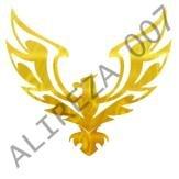 alireza007